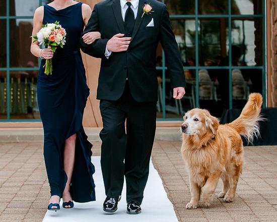 Snowbasin Wedding- Photographer Brian Smyer-33