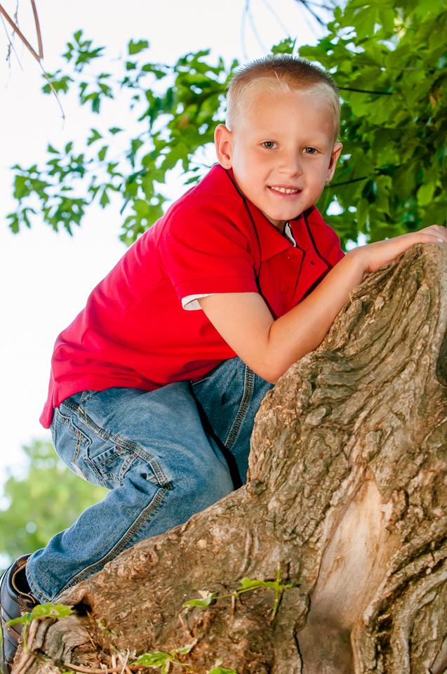 Portrait in a tree