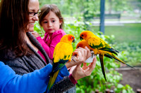 Family Outing at Tracey Aviary-1549