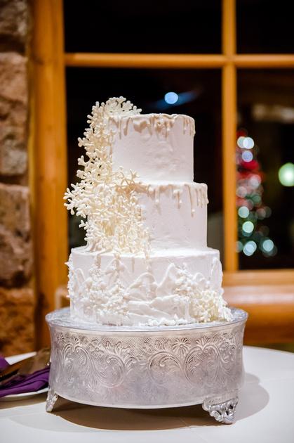 Glenn and Jenna wedding day 12-30-16-3003